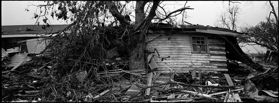 lower 9th ward after hurricane katrina - panormic of house and tree