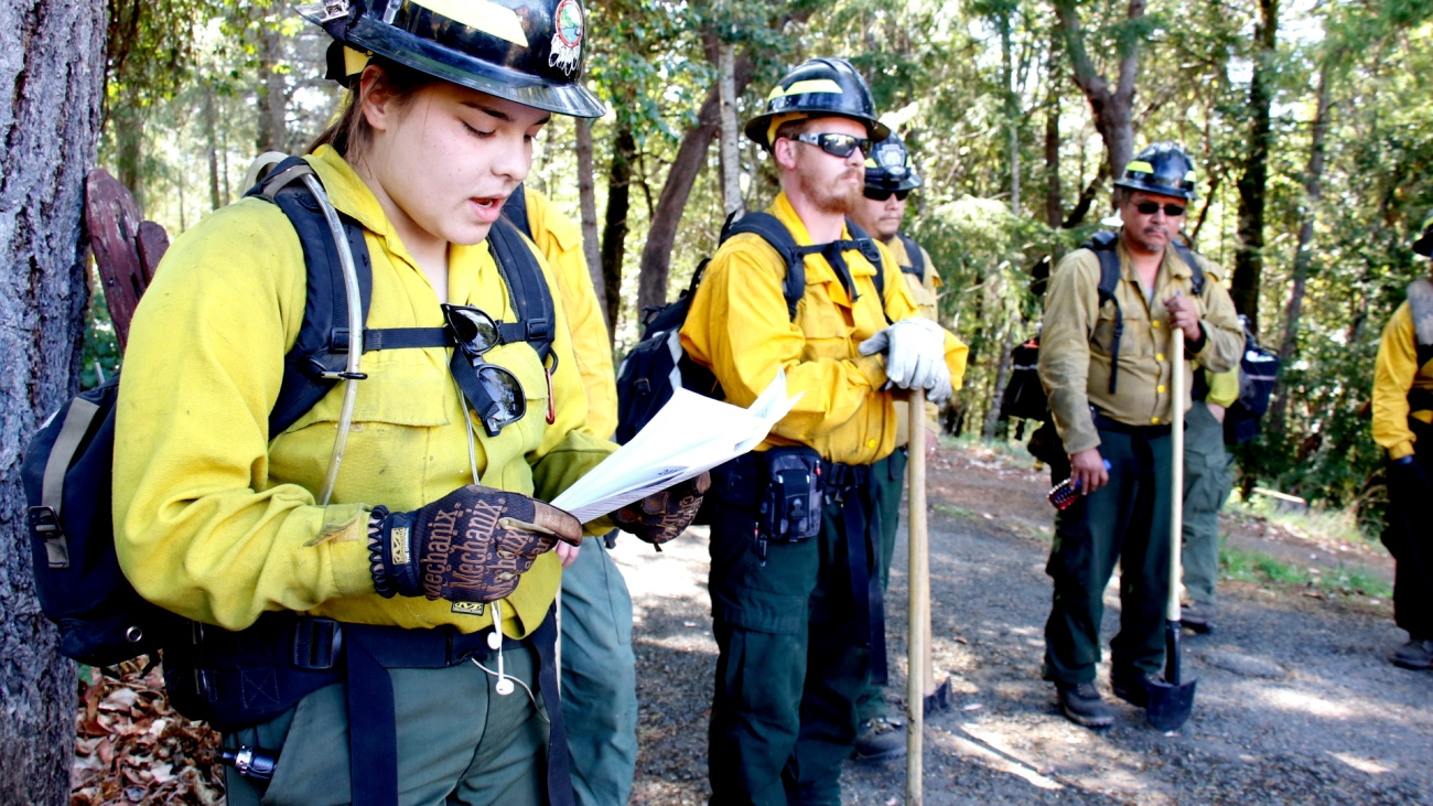 People in hardhats and fire-proof clothing stand on a road in a forest, reviewing a paper.