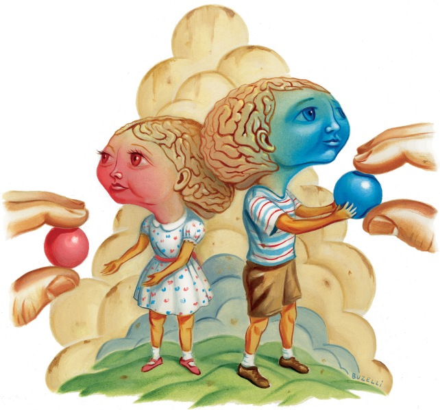 "A pink ""girl"" brain in a dress is given a pink ball while the blue ""boy"" brain in shorts is given a blue ball."