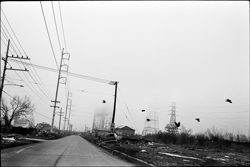 lower 9th ward after hurricane katrina - birds flying over