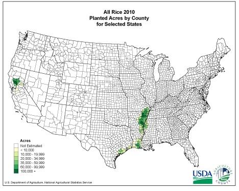 US rice production.  USDA