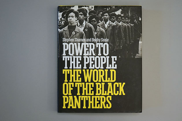 Power to the People by Stephen Shames